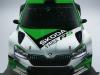 Skoda_Motorsport_2019_3