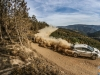 Test_Ogier_MSport_0417_4