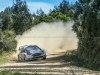 Test_Ogier_MSport_0417_9